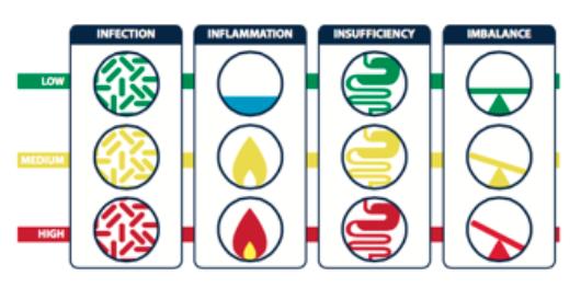 Gi Effects Stool Profile Integrative Wellness